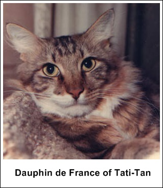 Dauphin de France of Tati-Tan