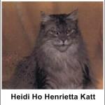 Heidi Ho Henrietta Katt
